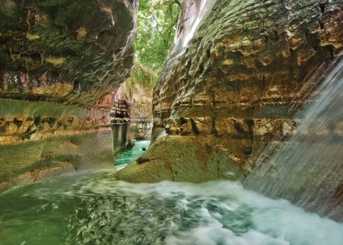 Private Excursion to Damajagua ( 27 Falls )