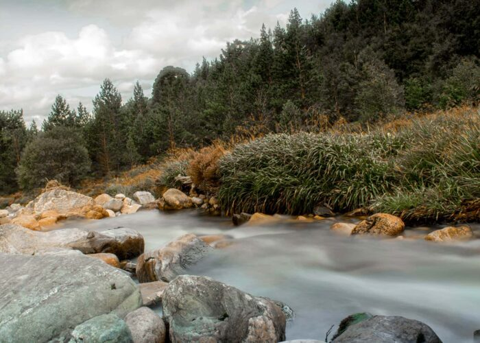 Self Guided Walking Tour in the Cairngorms