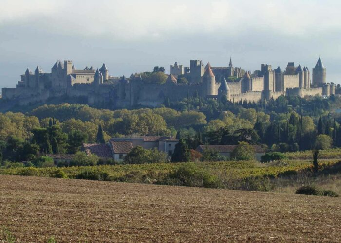 Tour to Carcassonne and Albi