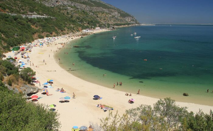 Full Day Private Tour - Lisbon South Beaches and Wine Region
