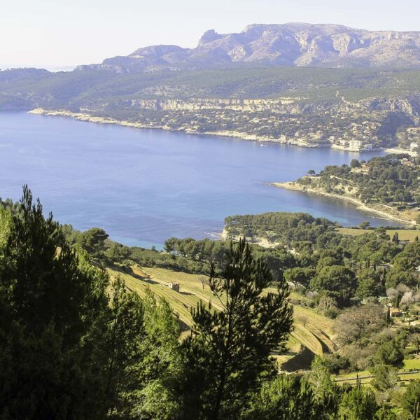 Marseille to Cassis and More Tour!