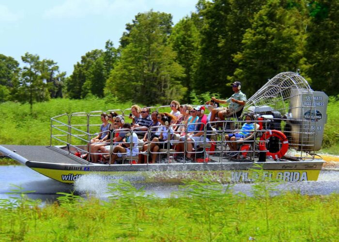 Ultimate Airboat Ride at Wild Florida
