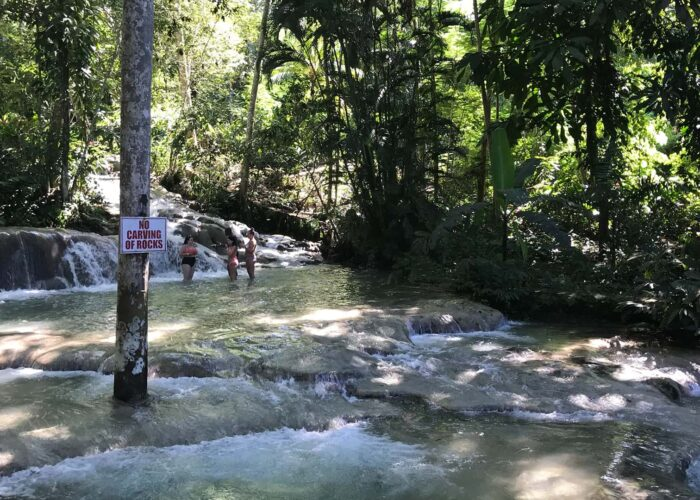 Dunn's River Falls Adventure Tour from Falmouth