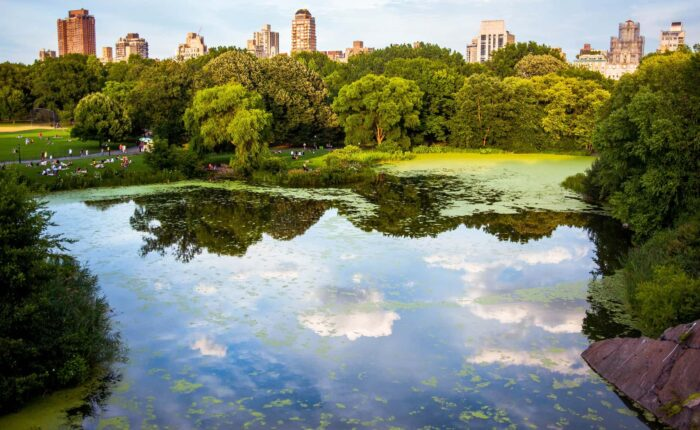 The Story Behind Central Park: Manhattan's Backyard